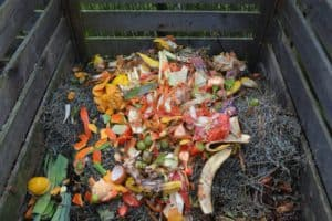 40 percent of all food is waste in US