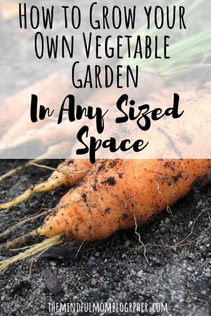 Learn how to grow vegetables in pots, containers, a yard, or a community garden! This post is perfect for anyone looking to learn how to grow their own vegetables - whether you're a beginner or intermediate gardener. Also learn how to keep your gardening zero waste friendly! #zerowaste #container #pots #garden