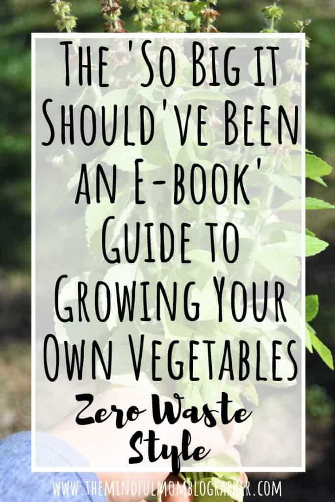 Have you ever wanted to grow your own vegetables in a garden? Whether you are creating a garden in your yard, containers, pots, or a community garden, this post is for you. This post also includes tips on how to garden zero waste friendly! #zerowaste #garden #vegetables